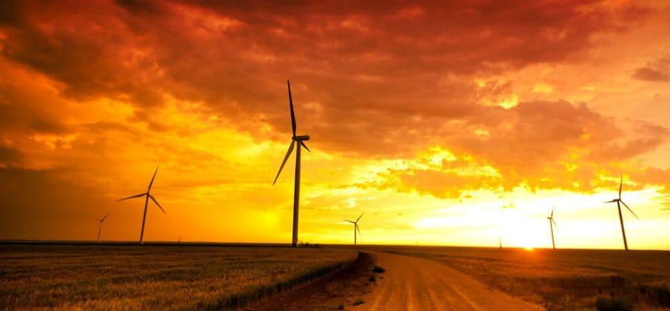 Te weinig oranje stroom tegenover steeds populairder Europese groene stroom