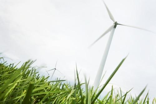 Verbruik groene energie toegenomen